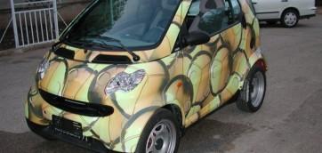 foto decorazioni per auto automobile